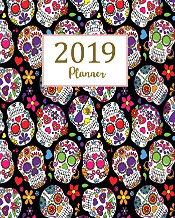 2019 Planner: Daily Weekly Monthly Planner Calendar, Journal Planner and Notebook, Agenda Schedule Organizer, Academic Student Planner, Appointment ... & Ornaments (January 2019 to December 2019) Cover