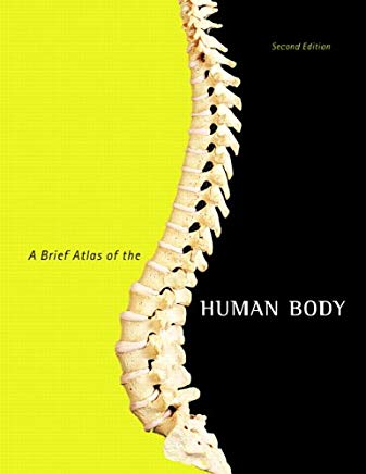 A Brief Atlas of the Human Body Cover