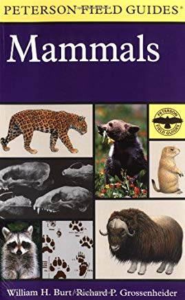 A Field Guide to the Mammals: North America North of Mexico (Peterson Field Guide Series) Cover