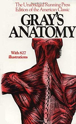 Anatomy, Descriptive and Surgical, 1901 Edition Cover