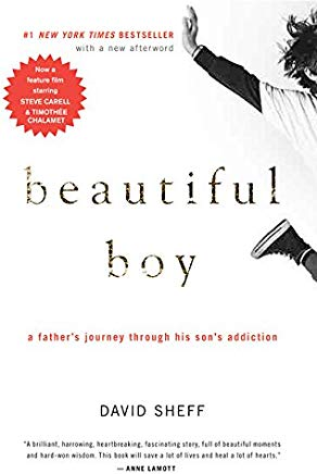 Beautiful Boy: A Father's Journey Through His Son's Addiction Cover