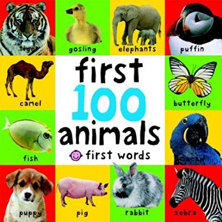 Big Board First 100 Animals (First Words) Cover