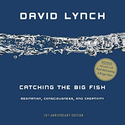 Catching the Big Fish: Meditation, Consciousness, and Creativity: 10th Anniversary Edition Cover