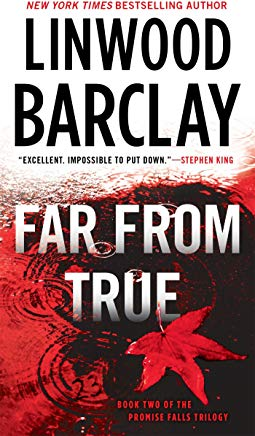 Far From True (Promise Falls Trilogy) Cover