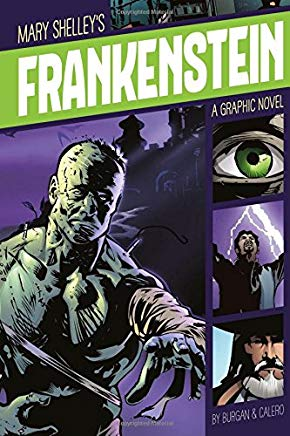 Frankenstein (Graphic Revolve: Common Core Editions) Cover