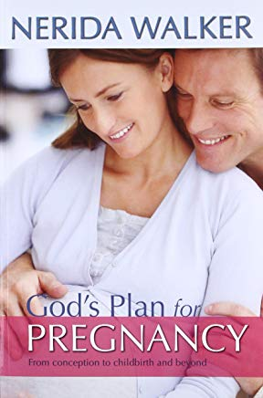 God's Plan for Pregnancy: From Conception to Childbirth and Beyond Cover