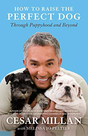How to Raise the Perfect Dog: Through Puppyhood and Beyond Cover