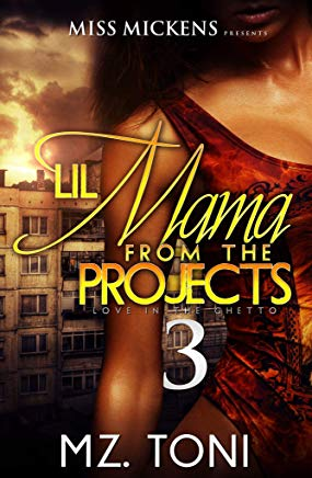 Lil Mama From The Projects 3: Love In The Ghetto Cover