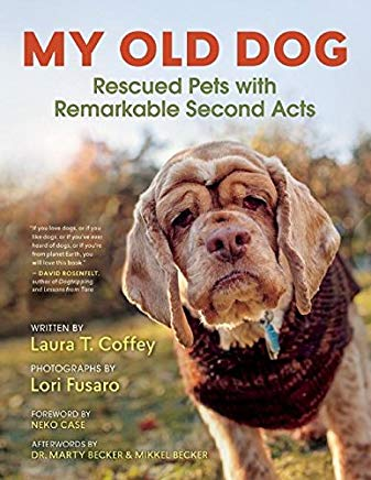 My Old Dog: Rescued Pets with Remarkable Second Acts Cover