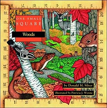 One Small Square: Woods Cover