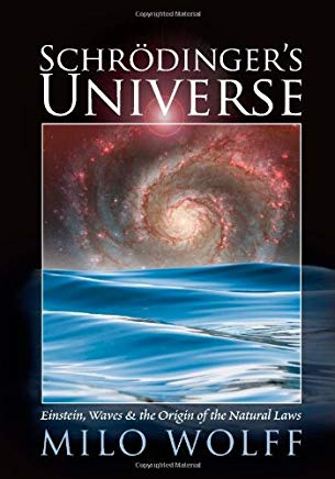 Schroedinger's Universe and the Origin of the Natural Laws Cover