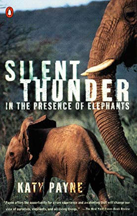 Silent Thunder: In the Presence of Elephants Cover
