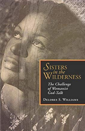 Sisters in the Wilderness: The Challenge of Womanist God-Talk Cover