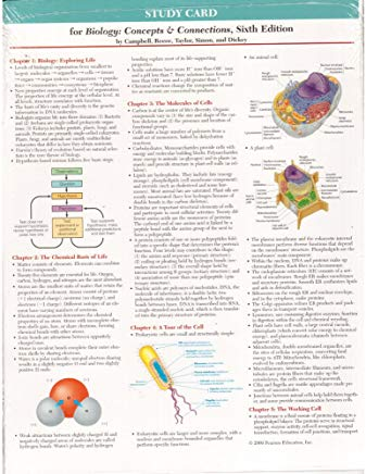 Study Card for Biology: Concepts and Connections Cover