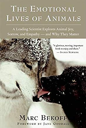 The Emotional Lives of Animals: A Leading Scientist Explores Animal Joy, Sorrow, and Empathy ― and Why They Matter Cover