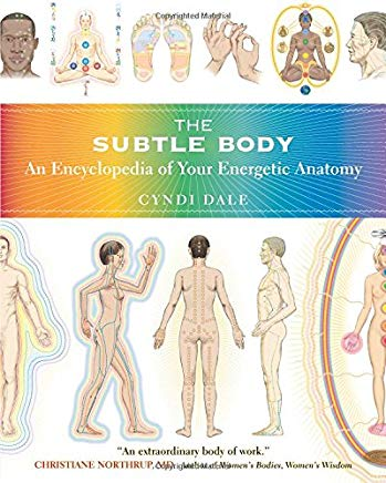The Subtle Body: An Encyclopedia of Your Energetic Anatomy Cover