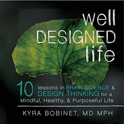 Well Designed Life: 10 Lessons in Brain Science & Design Thinking for a Mindful, Healthy, & Purposeful Life Cover